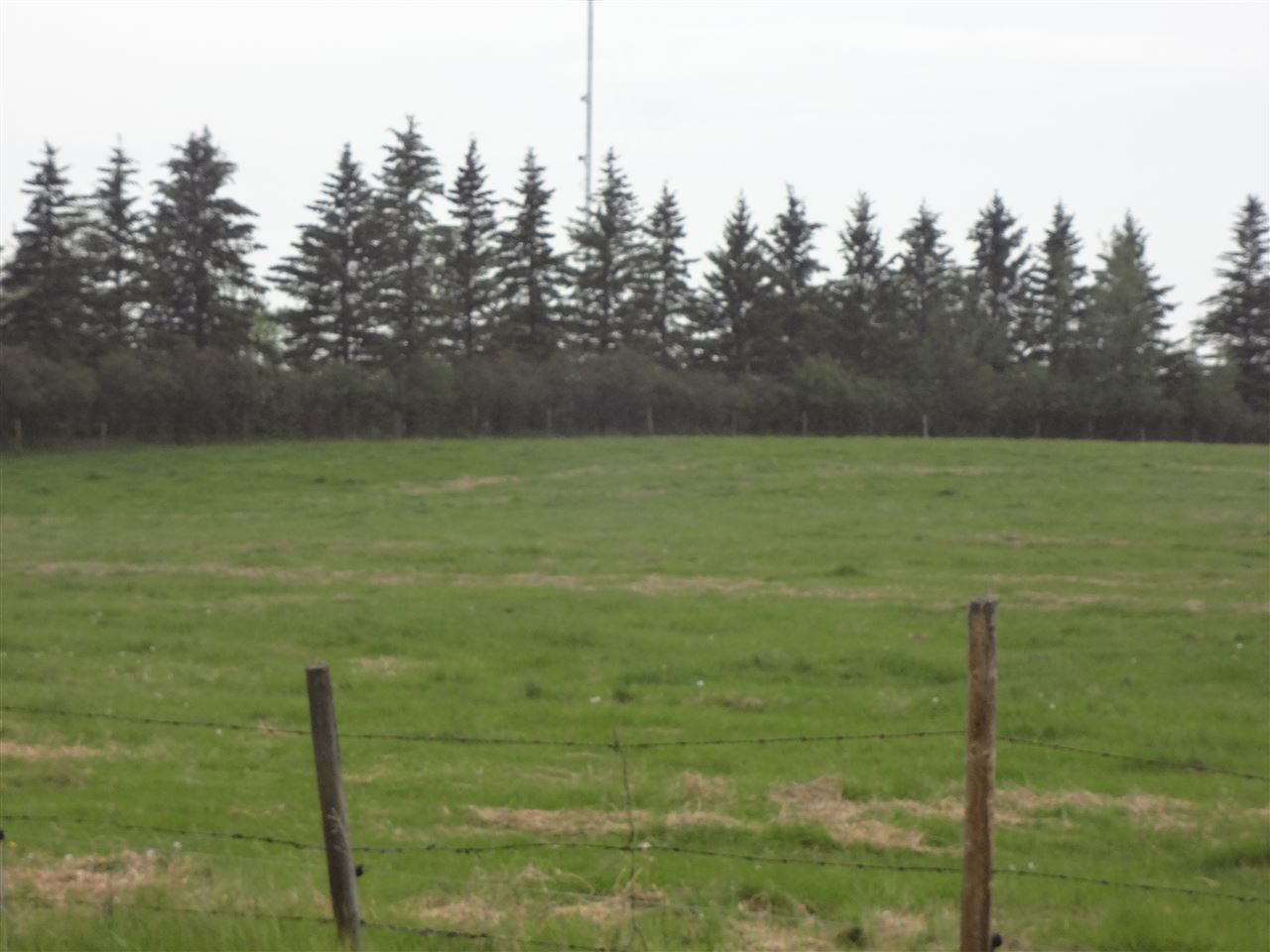 Main Photo: 14 53160 RR 212 Road: Rural Strathcona County Rural Land/Vacant Lot for sale : MLS® # E4036273