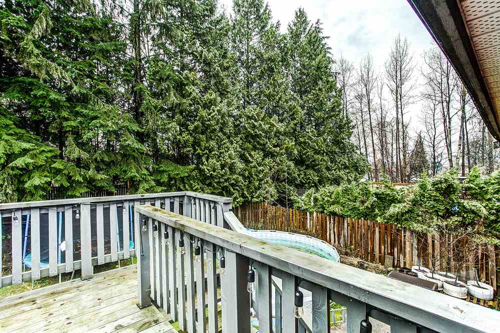 Photo 14: 20914 ROSEWOOD Place in Maple Ridge: Southwest Maple Ridge House for sale : MLS® # R2150995