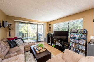 "Main Photo: 227 12170 222 Street in Maple Ridge: West Central Condo for sale in ""Wildwood Terrace"" : MLS®# R2252579"