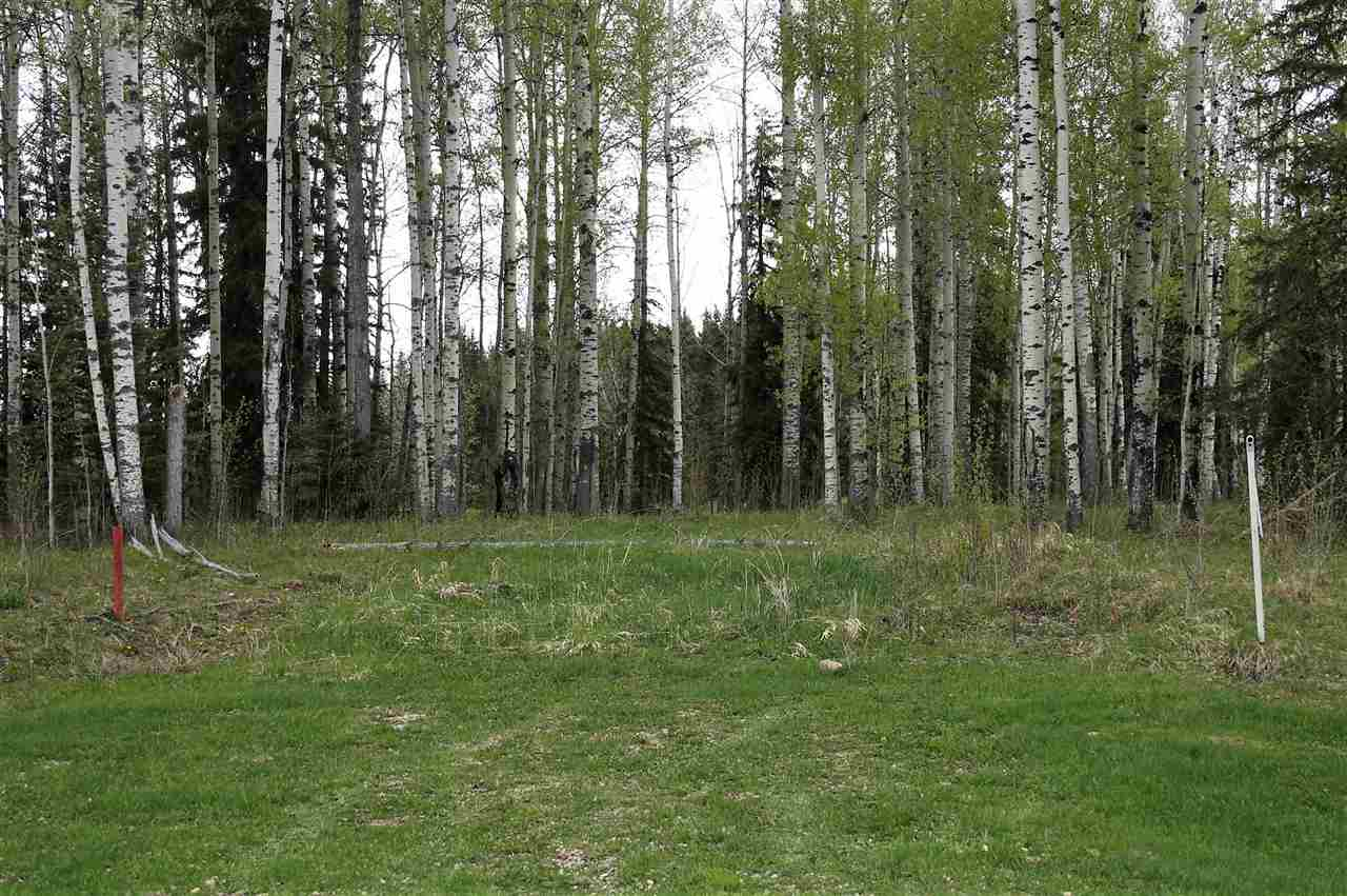 Main Photo: 33 Silver Springs Drive: Rural Wetaskiwin County Rural Land/Vacant Lot for sale : MLS® # E4064098