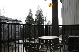 "Main Photo: 310 11665 HANEY Bypass in Maple Ridge: West Central Condo for sale in ""Haney Landing"" : MLS(r) # R2180089"