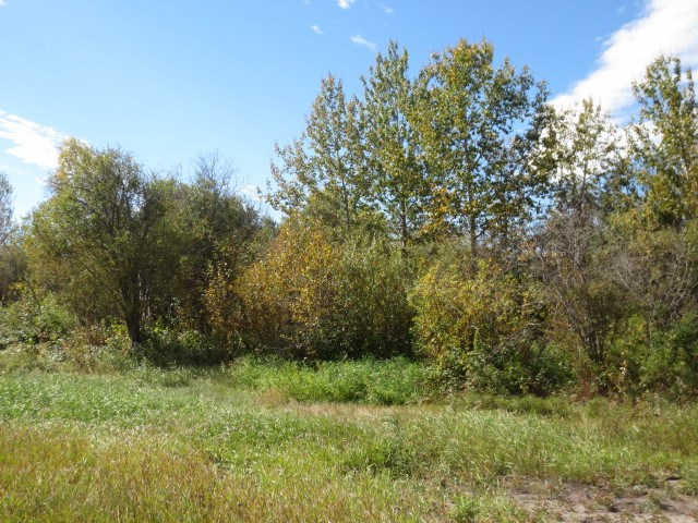 Main Photo: NSE22-57-17-W4 Lamont County: Rural Lamont County Rural Land/Vacant Lot for sale : MLS® # E4071193