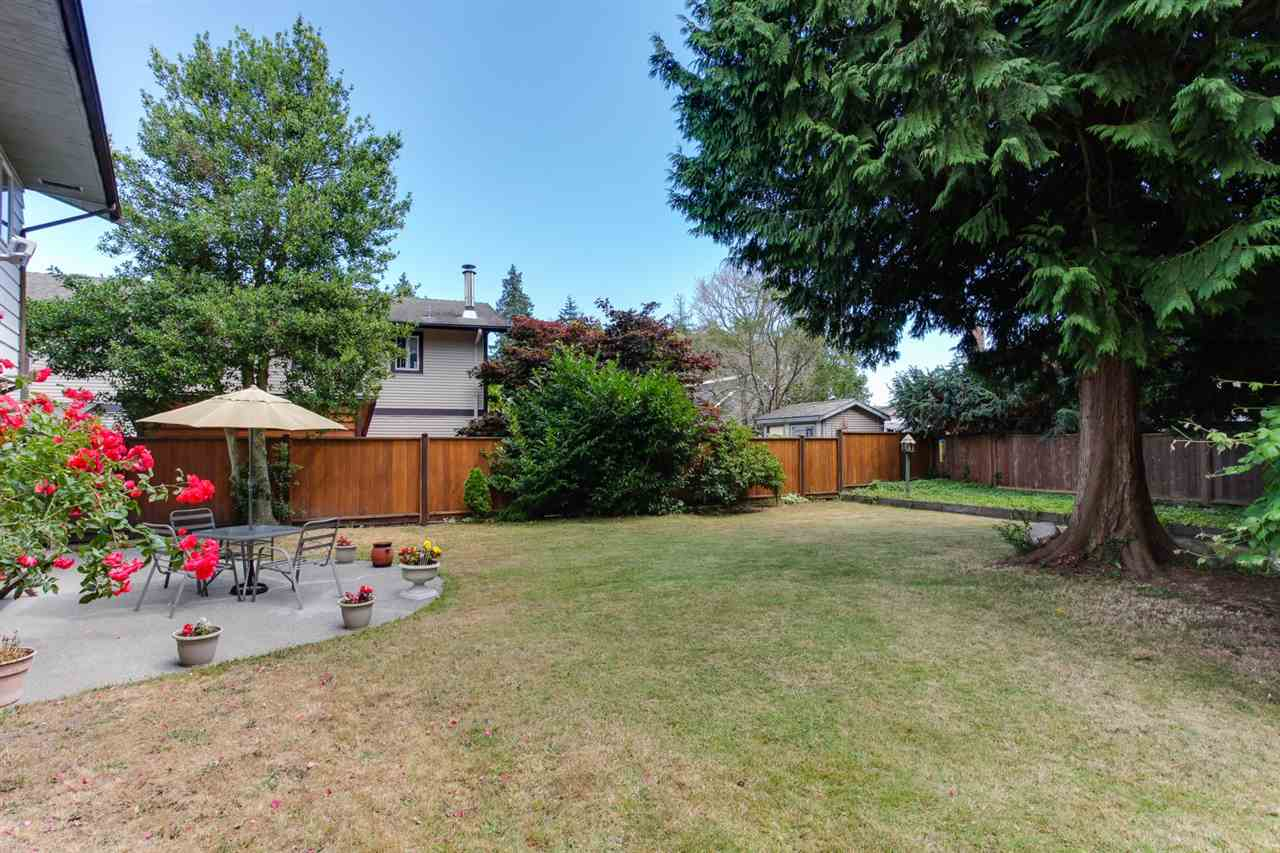 Large 8248 sqft south-facing backyard with patio and dedicated garden area.