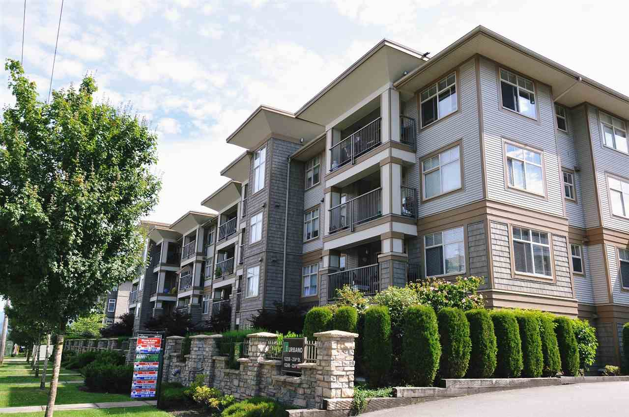 "Main Photo: 125 12238 224TH Street in Maple Ridge: East Central Condo for sale in ""URBANO"" : MLS® # R2141802"