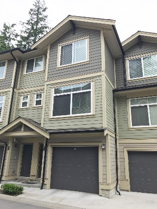 "Main Photo: 33 5957 152 Street in Surrey: Sullivan Station Townhouse for sale in ""SULLIVAN STATION"" : MLS(r) # R2178120"