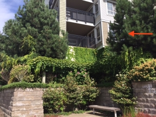 "Main Photo: 105 2088 BETA Avenue in Burnaby: Brentwood Park Condo for sale in ""MEMENTO"" (Burnaby North)  : MLS® # R2200714"