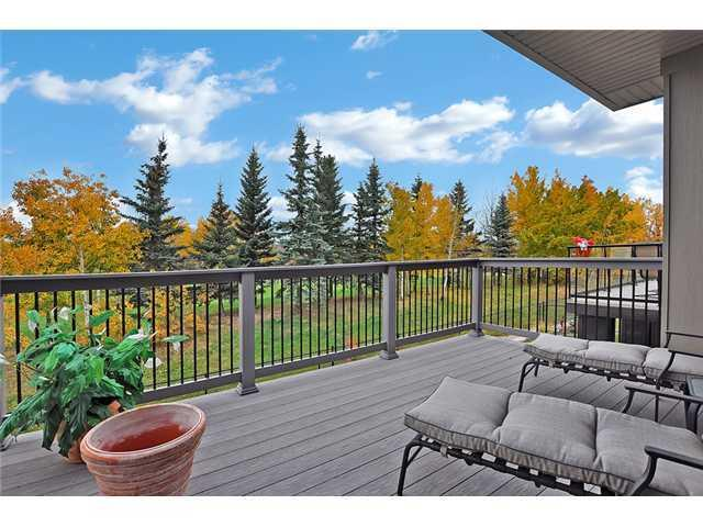 Photo 19: 460 CRYSTAL GREEN Manor: Okotoks House for sale : MLS(r) # C3648914
