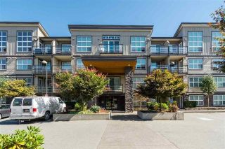 "Main Photo: 418 30525 CARDINAL Avenue in Abbotsford: Abbotsford West Condo for sale in ""Tamarind"" : MLS® # R2240820"