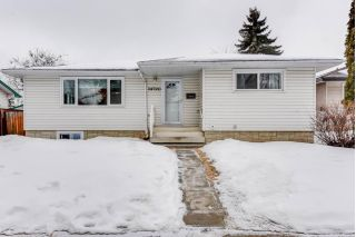 Main Photo: 14720 65 Street NW in Edmonton: Zone 02 House for sale : MLS® # E4101106