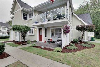"Main Photo: 34 23560 119 Avenue in Maple Ridge: Cottonwood MR Townhouse for sale in ""HOLLYHOCK"" : MLS®# R2306890"