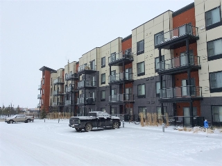 Main Photo: 308 320 Ambleside Link SW in Edmonton: Zone 56 Condo for sale : MLS(r) # E4054555