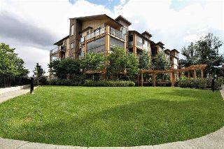 "Main Photo: 407 12655 190A Street in Pitt Meadows: Mid Meadows Condo for sale in ""CEDAR DOWNS"" : MLS® # R2207031"