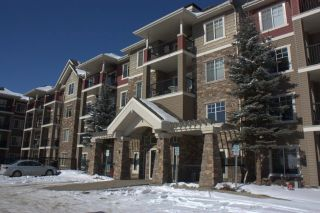 Main Photo: 250 2096 BLACKMUD CREEK Drive SW in Edmonton: Zone 55 Condo for sale : MLS® # E4099833