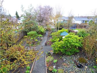 Photo 16: 2546 Shelbourne Street in VICTORIA: Vi Fernwood Residential for sale (Victoria)  : MLS® # 305804