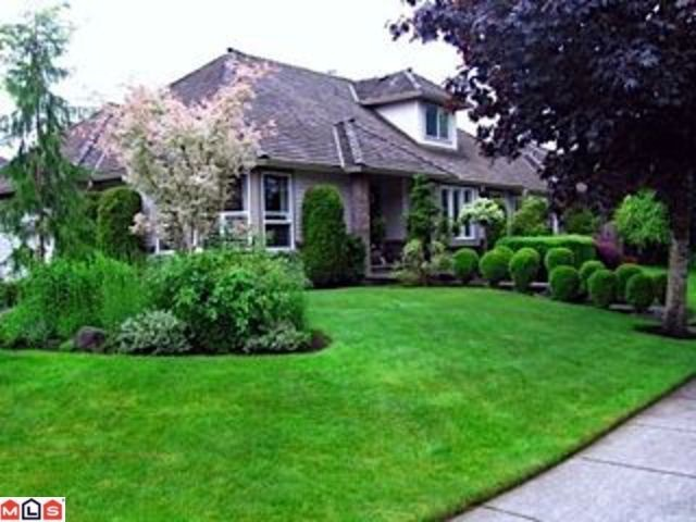 Main Photo: 20684 93 in Langley: House for sale : MLS®# F1221079