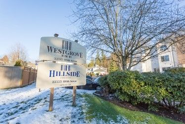 "Main Photo: 204 22515 116 Avenue in Maple Ridge: East Central Townhouse for sale in ""FRASERVIEW VILLAGE"" : MLS®# R2229278"