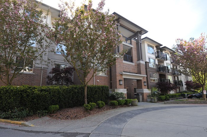 "Main Photo: 302 11667 HANEY Bypass in Maple Ridge: West Central Condo for sale in ""HANEY'S LANDING"" : MLS®# R2164719"