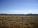 Main Photo: RR 211 and TWP RD 534: Rural Strathcona County Rural Land/Vacant Lot for sale : MLS® # E4071311