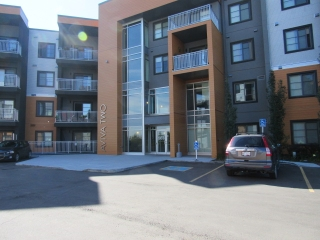 Main Photo: 119, 503 Albany Way Northwest in Edmonton: Condominium for rent