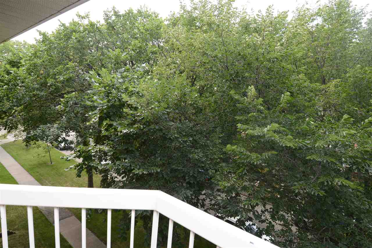 The balcony is PRIVATE and overlooks the tree-tops