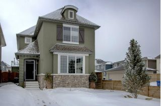 Main Photo: 341 MARQUIS Heights SE in Calgary: Mahogany House for sale : MLS®# C4177728