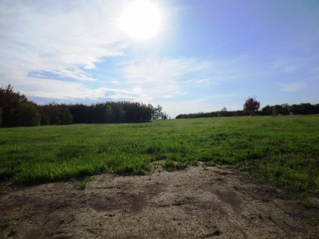 Main Photo: Rge Rd 191 & Twnshp Rd 520: Rural Beaver County Rural Land/Vacant Lot for sale : MLS® # E4035622