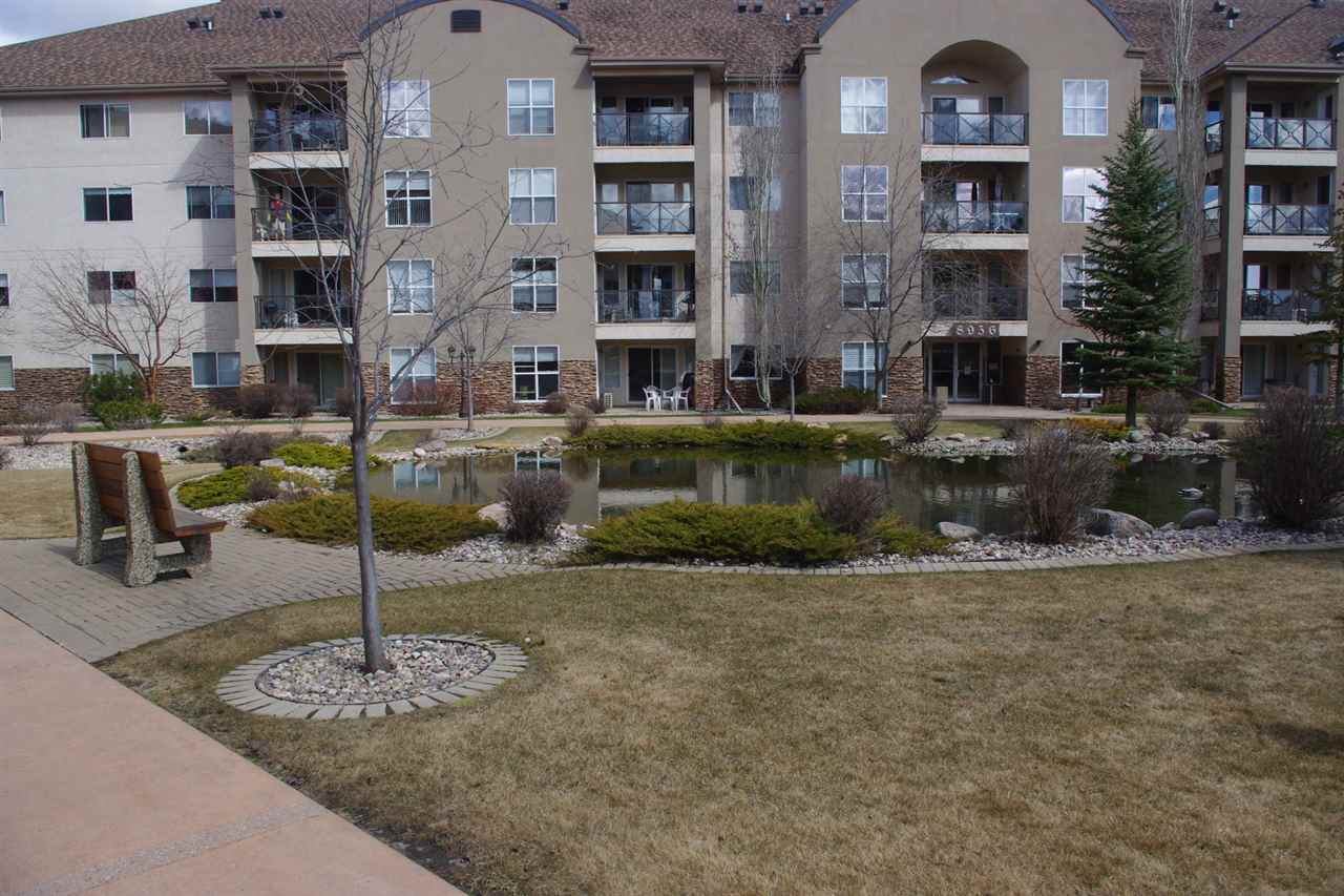 Photo 19: 110 8942 156 Street in Edmonton: Zone 22 Condo for sale : MLS(r) # E4061816