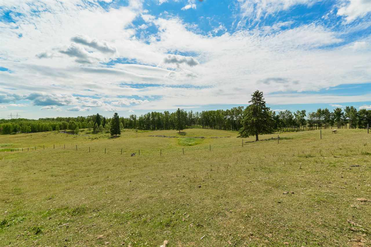 Photo 25: 51145 Range Road 31: Rural Leduc County House for sale : MLS® # E4074411