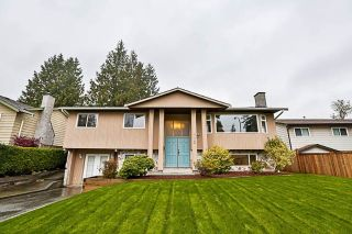 "Main Photo: 4633 203 Street in Langley: Langley City House for sale in ""Creekside"" : MLS® # R2221810"
