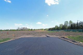Main Photo: 1 - 53217 RR 263: Rural Parkland County Rural Land/Vacant Lot for sale : MLS®# E4114087