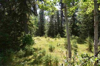 Main Photo: Range Road 20 TWP 542: Rural Lac Ste. Anne County Rural Land/Vacant Lot for sale : MLS® # E4096249