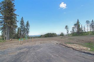 Main Photo: 11 - 53217 RR 263: Rural Parkland County Rural Land/Vacant Lot for sale : MLS®# E4114114
