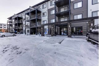 Main Photo: 327 504 ALBANY Way in Edmonton: Zone 27 Condo for sale : MLS® # E4087617