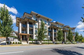 "Main Photo: 105 12409 HARRIS Road in Pitt Meadows: Mid Meadows Condo for sale in ""LIV42"" : MLS®# R2272114"