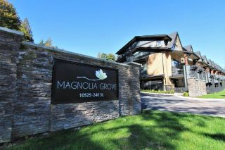 "Main Photo: 16 10525 240TH Street in Maple Ridge: Albion Townhouse for sale in ""MAGNOLIA GROVE"" : MLS®# R2309649"