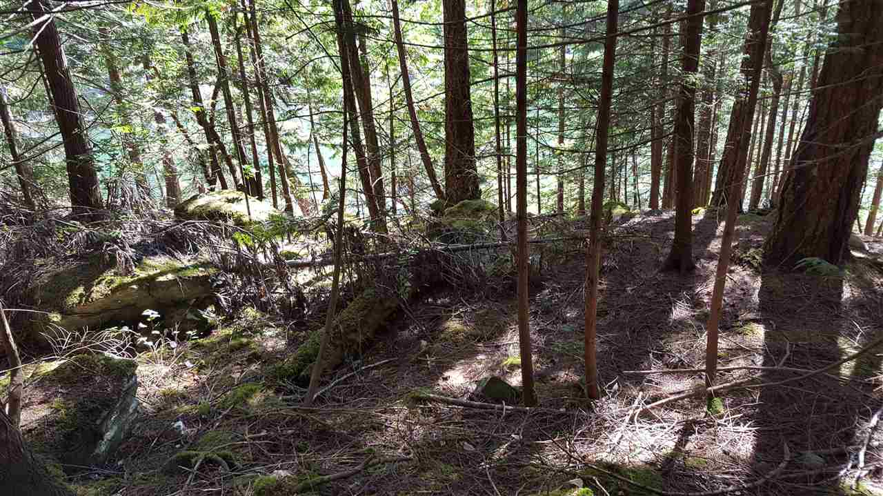 Photo 11: Photos: LOT 13 CLAYDON ROAD in Pender Harbour: Pender Harbour Egmont Home for sale (Sunshine Coast)  : MLS®# R2107406