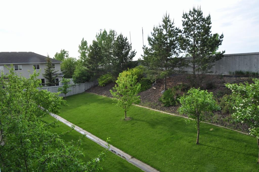 Photo 14: 215 4407 23 Street in Edmonton: Zone 30 Condo for sale : MLS(r) # E4067151