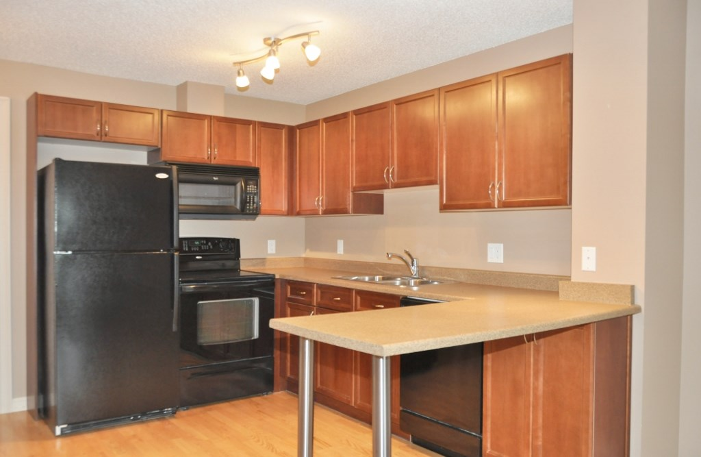Photo 3: 215 4407 23 Street in Edmonton: Zone 30 Condo for sale : MLS(r) # E4067151