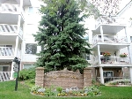 Main Photo: 18 9926 80 Avenue in Edmonton: Zone 17 Condo for sale : MLS® # E4076553