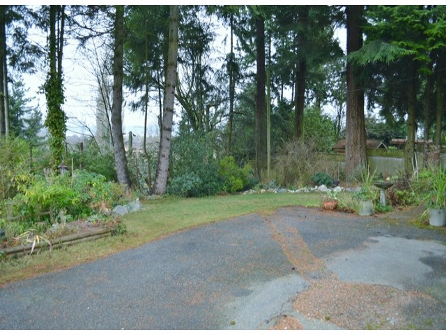 Photo 4: 2800 BAYVIEW Street in Surrey: Crescent Bch Ocean Pk. House for sale (South Surrey White Rock)  : MLS® # F1327230