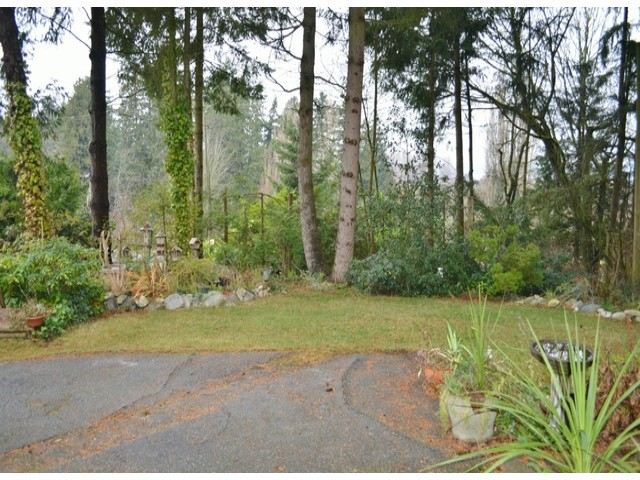 Photo 5: 2800 BAYVIEW Street in Surrey: Crescent Bch Ocean Pk. House for sale (South Surrey White Rock)  : MLS® # F1327230