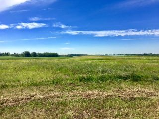 Main Photo: 50 50428 Range Road 234: Rural Leduc County Rural Land/Vacant Lot for sale : MLS® # E4074898