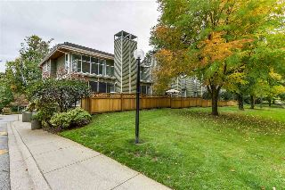 "Main Photo: 3359 FIELDSTONE Avenue in Vancouver: Champlain Heights Townhouse for sale in ""MARINE WOODS"" (Vancouver East)  : MLS® # R2213227"