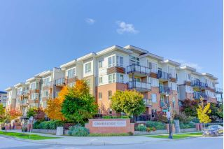 "Main Photo: 117 9399 TOMICKI Avenue in Richmond: West Cambie Condo for sale in ""CAMBRIDGE PARK"" : MLS®# R2314281"