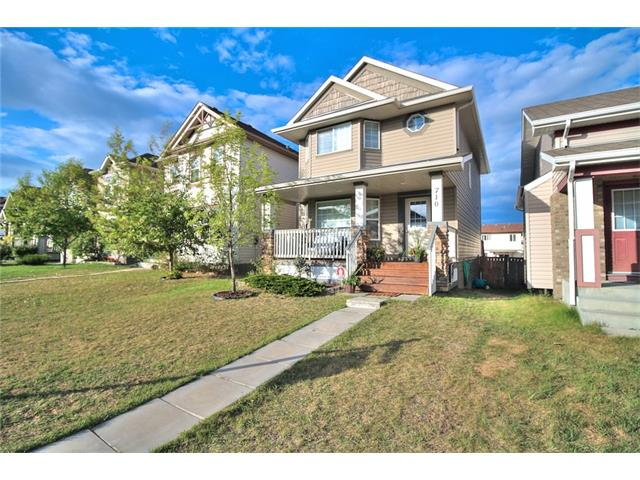 Main Photo: 710 EVERRIDGE Drive SW in Calgary: Evergreen House for sale : MLS® # C4065103