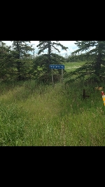 Main Photo: TWP RD 502 & RGE RD 250: Rural Leduc County Rural Land/Vacant Lot for sale : MLS® # E4064472