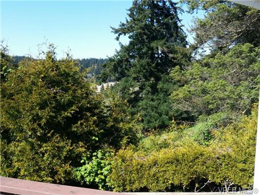 Photo 5: 4090 Holland Avenue in VICTORIA: SW Strawberry Vale Single Family Detached for sale (Saanich West)  : MLS® # 350104