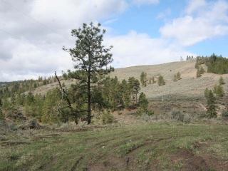 Main Photo: LOT C SHUSWAP ROAD in : Pritchard Lots/Acreage for sale (Kamloops)  : MLS(r) # 136933