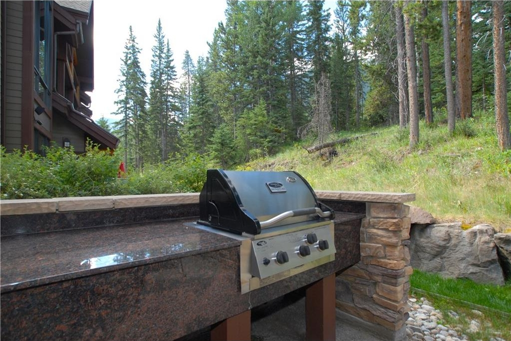Built-in Vermont Castings stainless steel BBQ