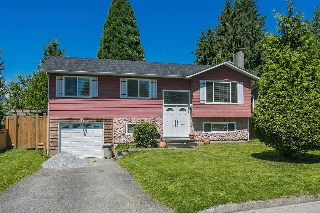 Main Photo: 21049 119 Avenue in Maple Ridge: Southwest Maple Ridge House for sale : MLS(r) # R2183575